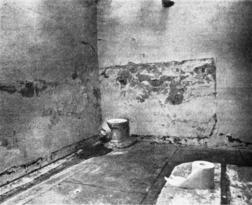Poop Spot in Prisons